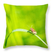 Let World Be Live Throw Pillow