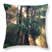 Let Your Light Shine Through Throw Pillow