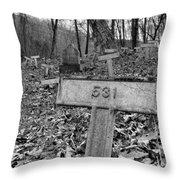 Letchworth Hidden Deaths Throw Pillow