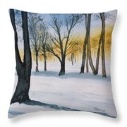 Letchworth State Park Ny Throw Pillow