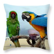 Lets Do Lunch Throw Pillow