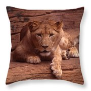 Let's Do Lunch Throw Pillow