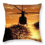Lets Fly Throw Pillow