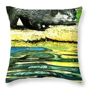 Lets Play And Swim Throw Pillow
