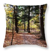 Let's Take A Walk In The Woods Throw Pillow