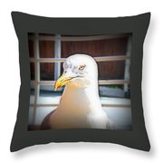Lets Take Off Together, To Your Place Or Mine   Throw Pillow