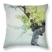 Letters From Anacapri - Italy Throw Pillow