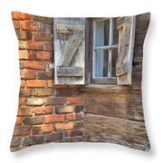 Letting Sunshine In Throw Pillow