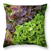 Lettuce Medley Throw Pillow