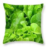 Lettuce Sing Throw Pillow