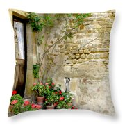 Levroux France Entrance Throw Pillow