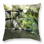 Lewis Creek Trail Throw Pillow