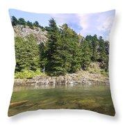 Lewis River Landscape Throw Pillow