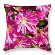 Lewisia Cotyledon Flowers Throw Pillow