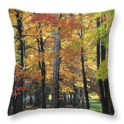 Lexington Park Throw Pillow