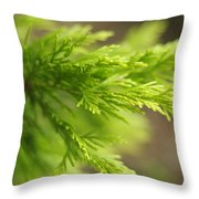 Leyland Cypress Golconda Throw Pillow