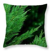 Leyland Cypress Green Throw Pillow