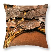 Lhiver Detail Throw Pillow