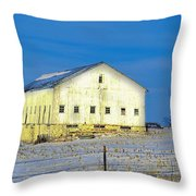 Liberty Barn Throw Pillow