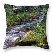 Liberty Creek 2014 #3 Throw Pillow