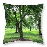 Liberty Hall - Apple Orchards Throw Pillow