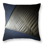 Libeskind Throw Pillow