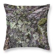 Lichen And Moss Throw Pillow