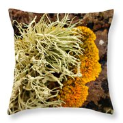 Lichen And Weed Throw Pillow