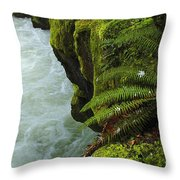Lichen Covered Rocks With Stream In Oregon Throw Pillow