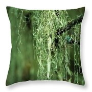 Lichen Hangs From A Tree  Corvallis Throw Pillow