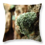 Lichen Mimic Throw Pillow
