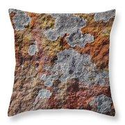 Lichen On Sandstone Throw Pillow