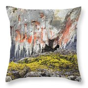 Lichen On Sea Beach Rock Throw Pillow