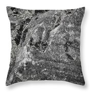 Lichen On The Whistlers - Black And White Throw Pillow