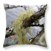Lichen On Tree Throw Pillow