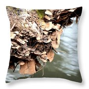 Lichens Abstract 2013 Throw Pillow