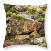 Lichens And Moss In Glen Strathfarrar Throw Pillow