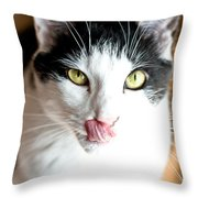 Licking His Chops Throw Pillow