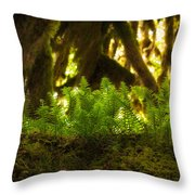 Licorice Fern Throw Pillow