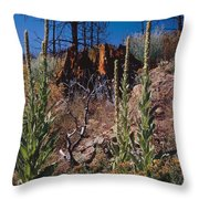 Life After The Burn Throw Pillow