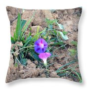 Life And Its Struggles Throw Pillow