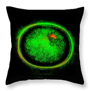 Life Begins Throw Pillow