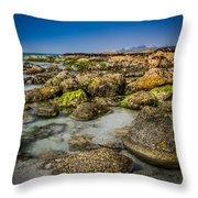 Life Clings As The Tides Ebb Throw Pillow