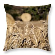 Life Cycle Of Wheat - Harvesting Throw Pillow
