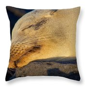 Life In Paradise Throw Pillow