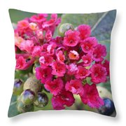 Life In Red Throw Pillow