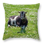 Life Is A Bed Of Roses Throw Pillow