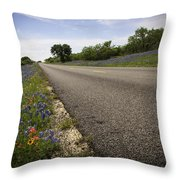 Life Is A Highway  Throw Pillow by Lynn Bauer