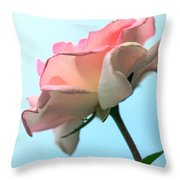Life Is All Roses And Blue Sky Throw Pillow
