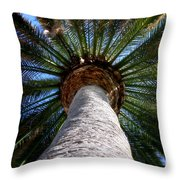 Life Is Looking Up By Diana Sainz Throw Pillow